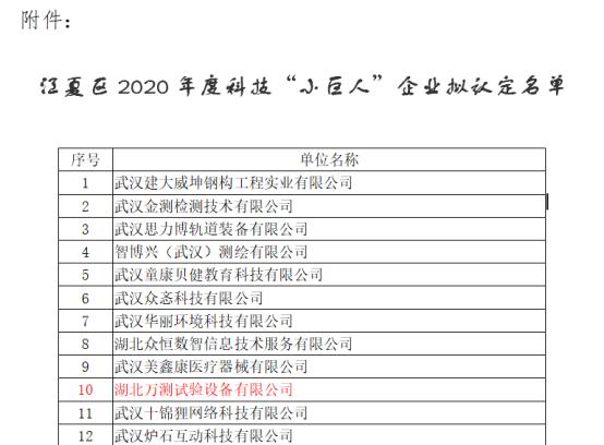 热烈祝贺湖北万测顺利通过武汉市科技小巨人企业认定155.png